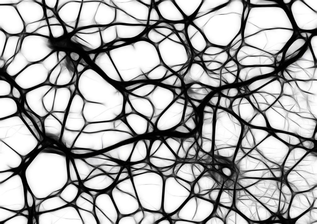 Hersencellenplaatje